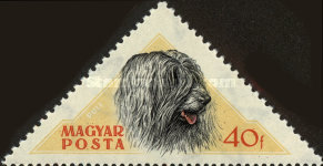 [Hungarian Dogs, Typ AXH]