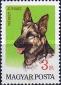 [Dogs, type CFF]