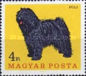 [Dogs, type CFG]