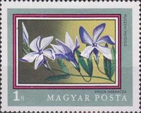 [The 200th Anniversary of the Botanical Garden of the University of Budapest, Typ CSX]