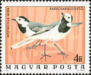 [Birds from the National Park Hortobagy, Typ DLH]