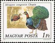 [Birds - Peacocks and Pheasants, Typ DLS]