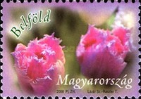 [Greeting Stamps, Typ GPG]