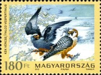 [Fauna of Hungary - Protected Birds of Prey, type GZD]