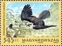 [Fauna of Hungary - Protected Birds of Prey, type GZE]