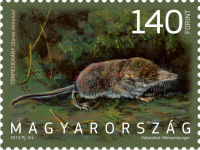 [Fauna of hungary, Typ HBO]