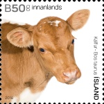 [The Young of Iceland's Domestic Animals, Typ AWC]