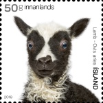 [The Young of Iceland's Domestic Animals, Typ AWD]