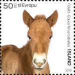 [The Young of Iceland's Domestic Animals, Typ AXF]