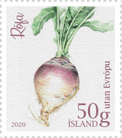[Icelandic Garden Vegetables, Typ AYI]