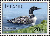 [Birds - Great Northern Diver, Typ GS]