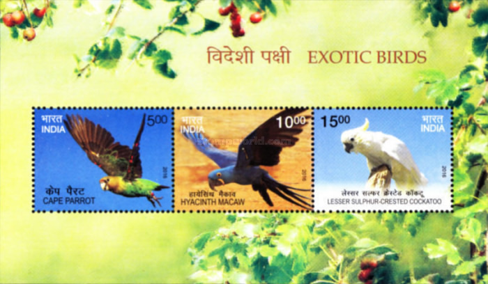 [Exotic Brids, Typ ]