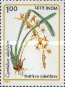 [Orchids, Typ AQX]