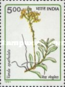 [Orchids, Typ ARB]