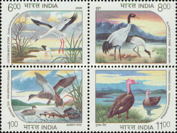 [Endangered Water Birds, Typ AVQ]