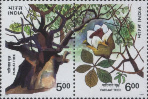 [Parijati Tree, Typ AZL]