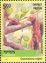[Medicinal Plants of India, Typ CCM]
