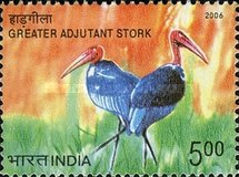 [Endangered Birds of India, type CKG]