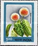 [Indian Flowers, Typ TZ]