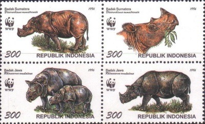 [The Sumatran Rhinoceros and the Javan Rhinoceros, Typ ]