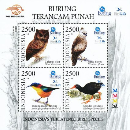 [Indonesia's Threatened Bird Species, Typ ]