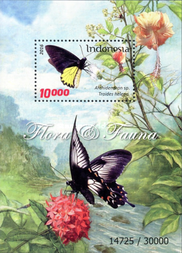 [Flora and Fauna - Butterflies and Flowers, Typ ]