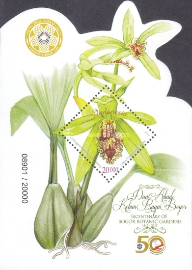 [Orchids - The 200th Anniversary of Bogor Botanic Gardens, Typ ]