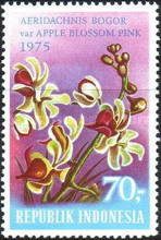 [Tourism - Indonesian Orchids, Typ AER]