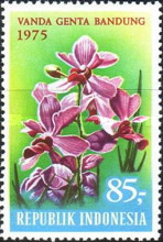 [Tourism - Indonesian Orchids, Typ AES]