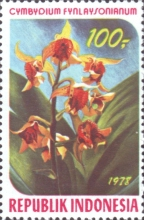 [Orchids, Typ AIP]