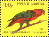 [Parrots, type ALL]