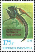 [Birds of Paradise, Typ AQN]