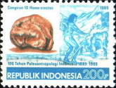 [The 100th Anniversary of Palaeoanthropology in Indonesia, Typ AXS]