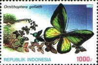 [Opening Ceremony of the Insectarium in Jakarta, Typ BDL]