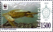[WWF - Sea Turtles, type DCV]