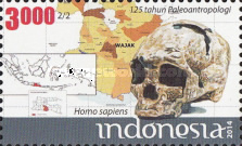 [The 125th Anniversary of Indonesian Palaeoanthropology, Typ DNC]