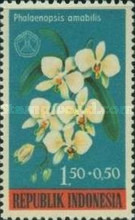 [Charity - Orchids Surtaxed, Typ NX]