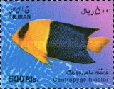 [Fish of the Persian Gulf, Typ DYR]