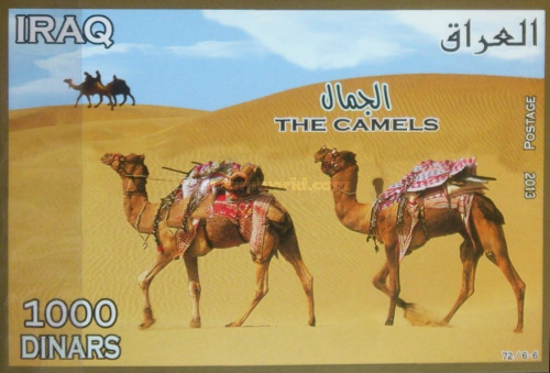 [Camels, Typ ]