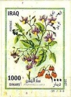 [Flowers - Self Adhesive, Typ AFG]