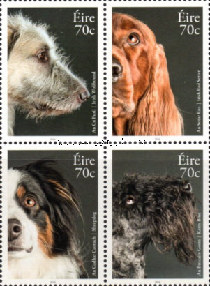 [Domestic Animals - Dogs, type ]