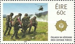 [The Irish Defence Forces, type DOT]