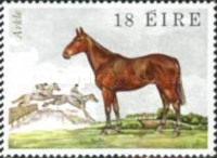 [Irish Horses, type HQ]