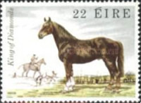 [Irish Horses, type HR]