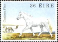 [Irish Horses, type HT]