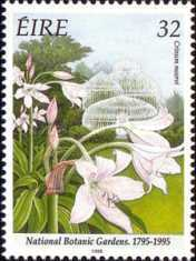 [The 200th Anniversary of the National Botanical Garden, Typ XV]