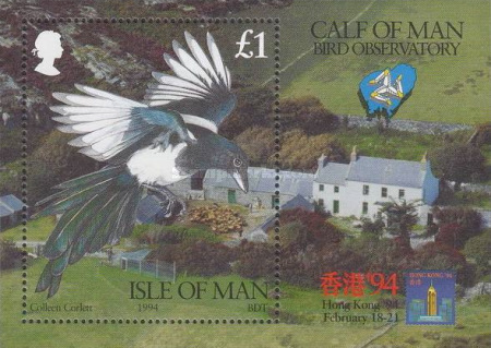 [Ornithological Observatory of Calf of Man, type ]
