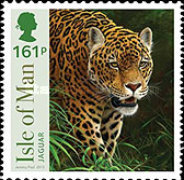 [SEPAC Issue - Big Cats, type BVN]