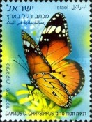 [Butterflies - 1,70 NIS, Typ CAC]
