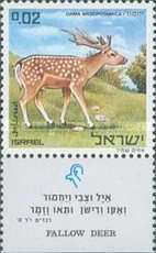 [Nature Reserves. Animals of Biblical Times, Typ RI]